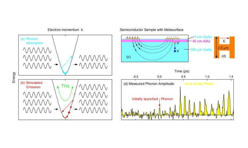 Amplifier for terahertz lattice vibrations in a semiconductor crystal