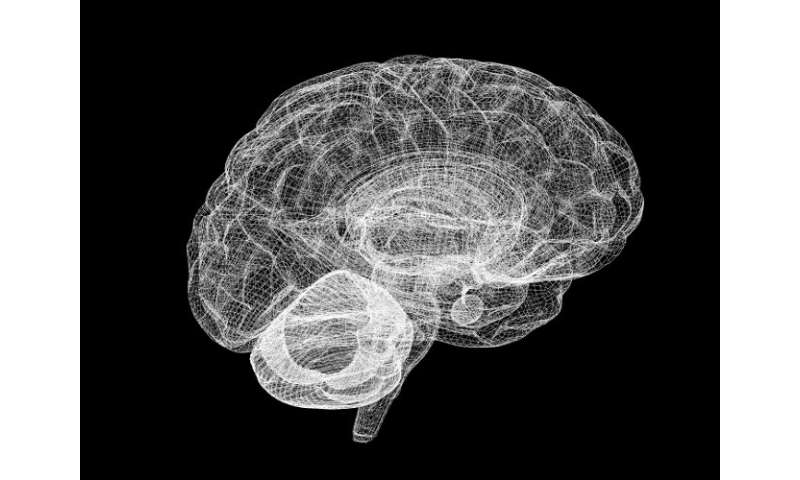 An artificial cerebellum that also learns to blink