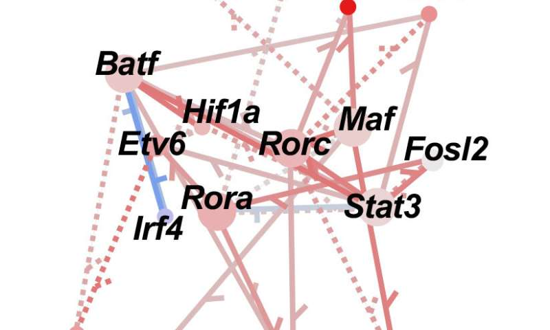 A new way to map cell regulatory networks