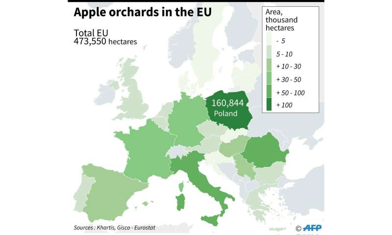 Apple orchards in the EU