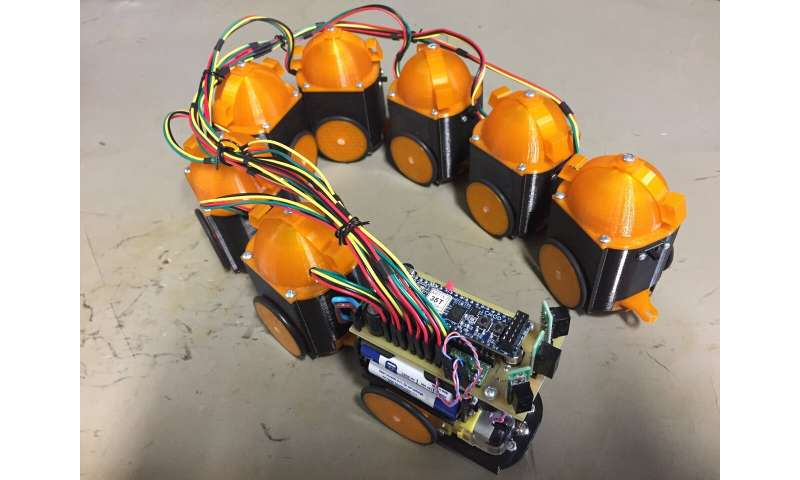 **A snake robot controlled by biomimetic CPGs