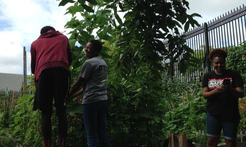 At a New York City garden, students grow their community roots and critical consciousness