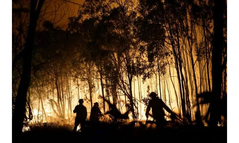 Australia has been hit by wildfires in recent months, which scientists say have been made worse by climate change