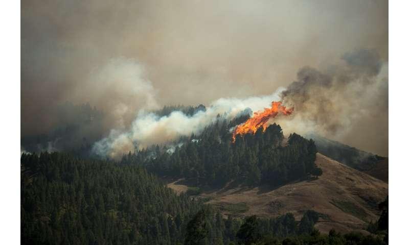 مقامات تخمین می زنند که ممکن است چندین روز طول بکشد تا آتش سوزی تحت کنترل قرار گیرد