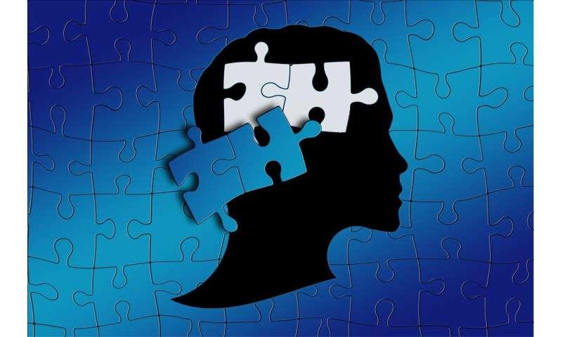 Autism Diagnosis Explained >> Autism Health Challenges Could Be Explained By Problem Behaviors