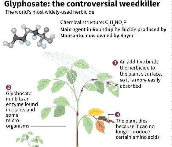 Bayer ha dicho que más de 13.000 demandas relacionadas con su herbicida Roundup base de glifosato se han puesto en marcha en los EE.UU.