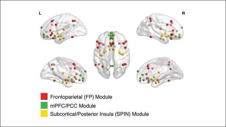 Big data clarifies emotional circuit development
