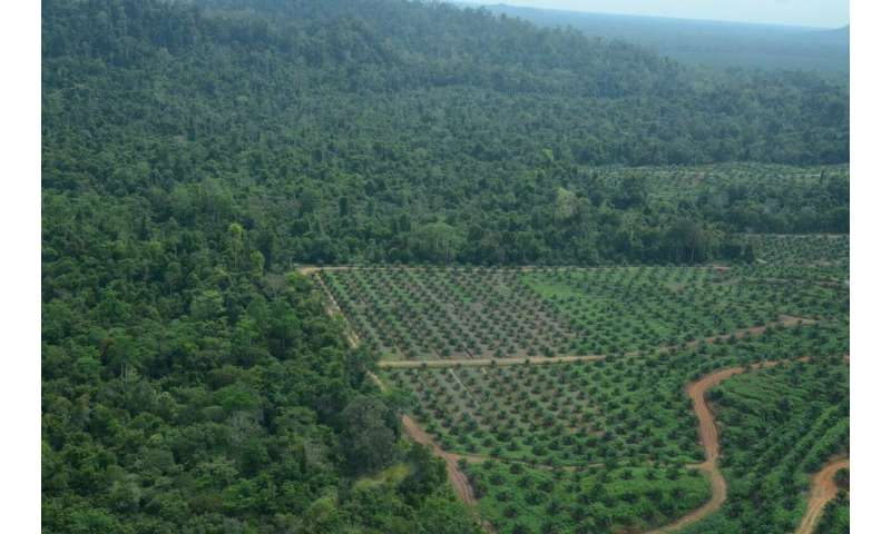 Biodiversity crisis: Technological advances in agriculture are not a sufficient response