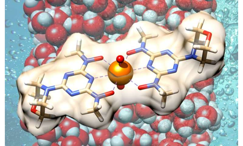 Bio-inspired material targets oceans' uranium stores for sustainable nuclear energy