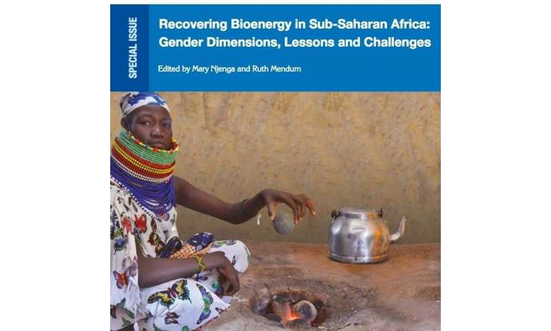 Book examines connection between gender and cooking energy in Sub-Saharan Africa