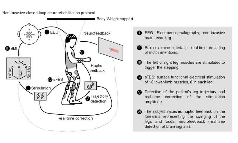 La stimulation musculaire non invasive contrôlée par le cerveau permet aux paraplégiques chroniques de marcher