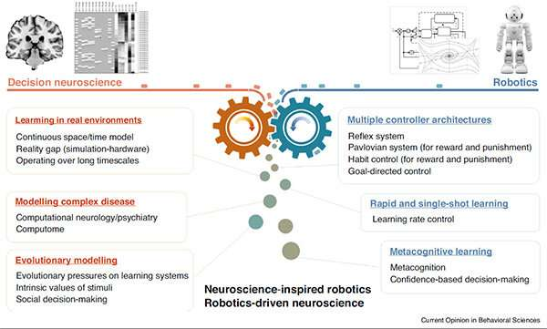 The artificial intelligence inspired by the brain in robots