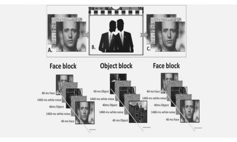 Brain scans on movie watchers reveal how we judge people