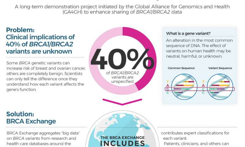 BRCA Exchange aggregates data on thousands of BRCA variants to understand cancer risk