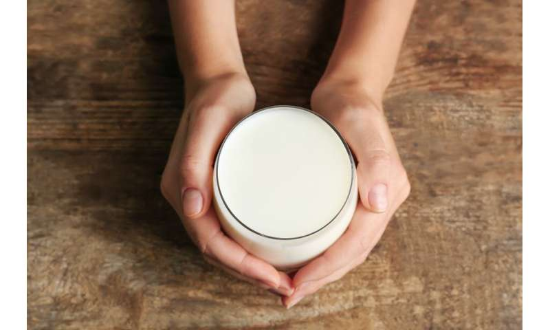 Camel milk reduces cell inflammation associated with type 2 diabetes