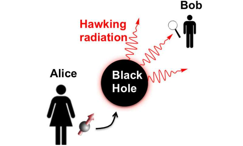 Can entangled qubits be used to probe black holes?