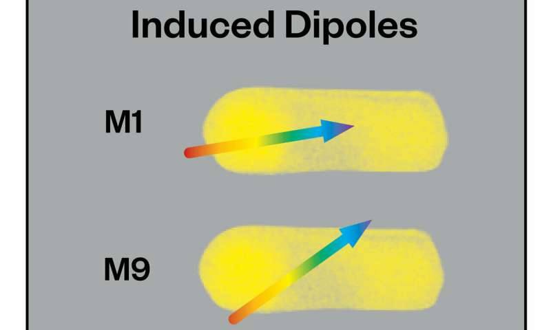 Chemicals induce dipoles to damp plasmons
