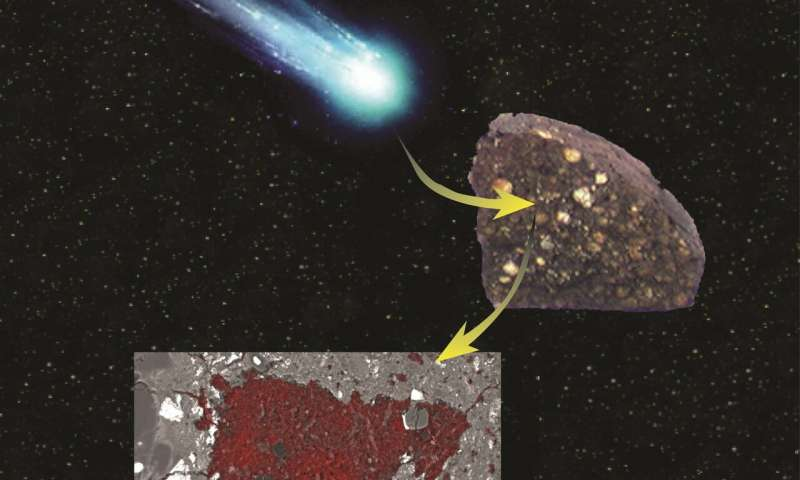 Cometary surprise found inside meteorite