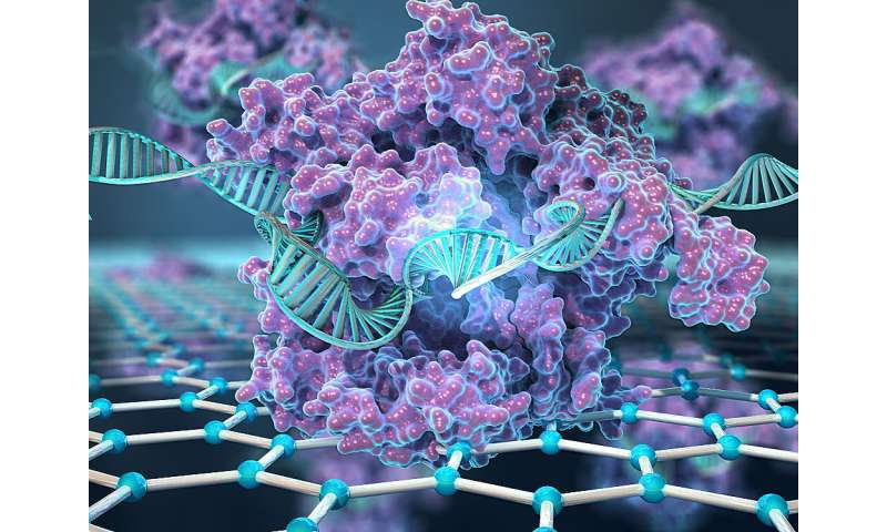 New CRISPR-powered device detects genetic mutations in minutes