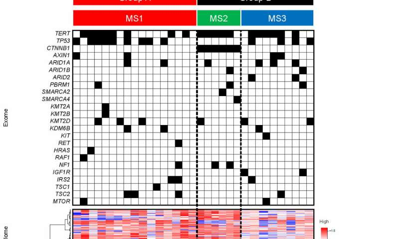 Crunching the data: New liver cancer subtypes revealed immunologically