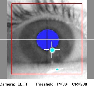 DeepEyedentification: identifying people based on micro eye movements