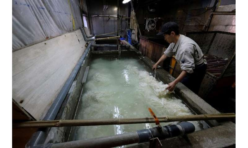 Despite its 1,300-year history and UNESCO Intangible Cultural Heritage status, washi paper is struggling to attract consumers an