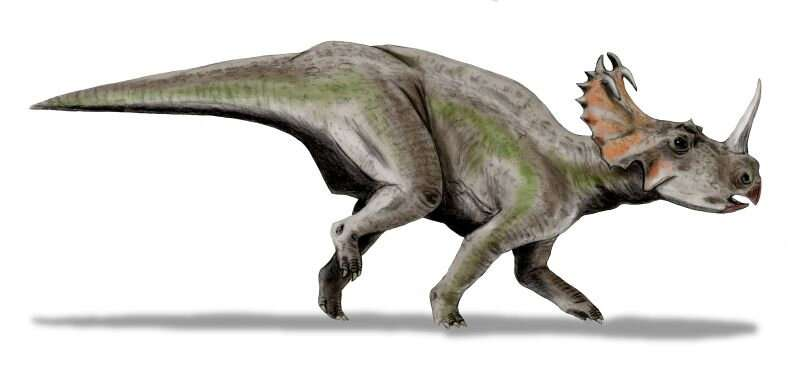 Dinosaur bones are home to microscopic life