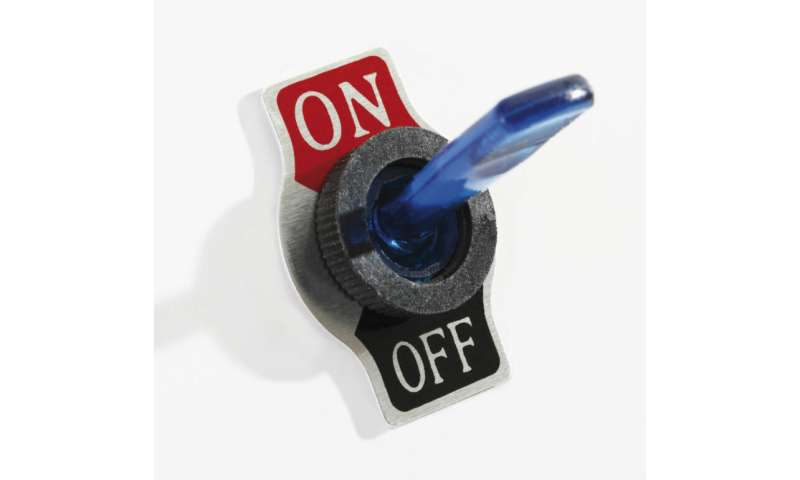 DNA's on/off switch