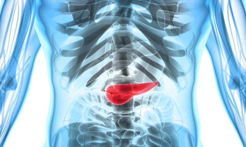 Early research shows a way to develop effective therapies against pancreatic cancer