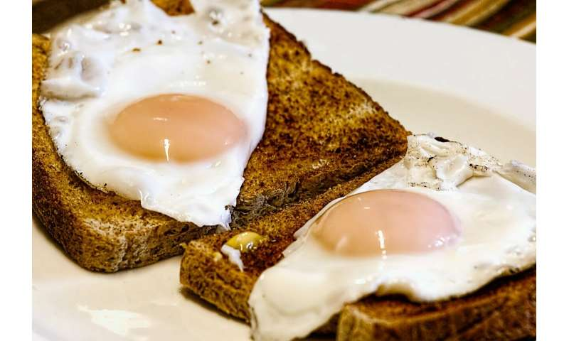 Cholesterol in eggs tied to cardiac disease, death