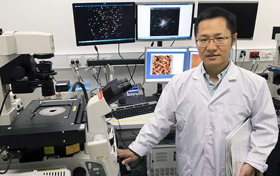 engineers unlock avenue for early cancer diagnosis