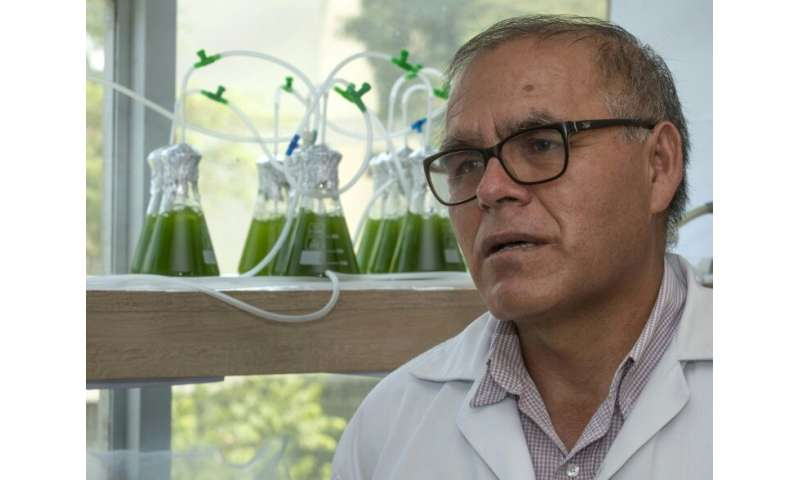 Enoc Jara says his team of scientists need funding to win the fight against mining waste pollution using algae