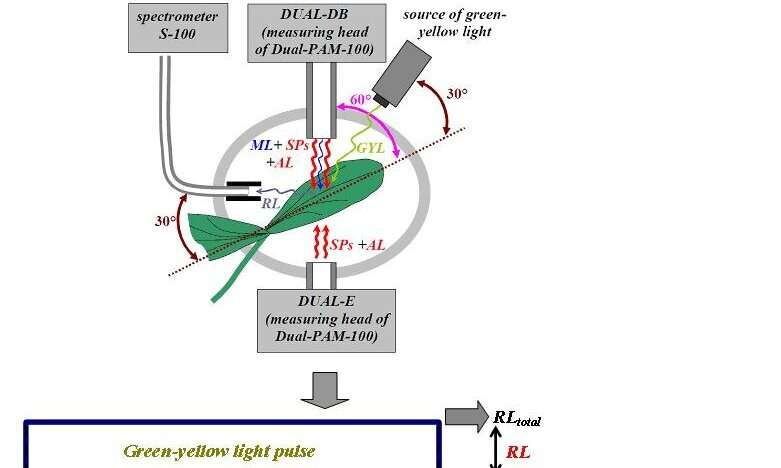 Essential tool for precision farming: new method for photochemical reflectance index measurement