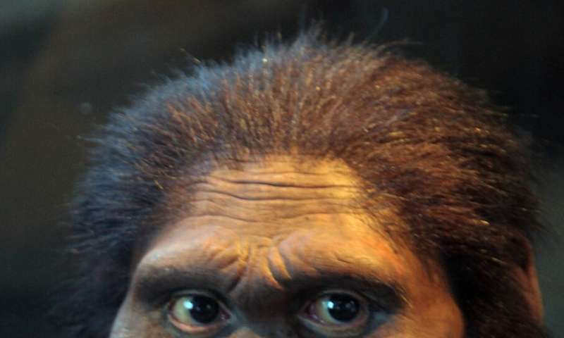 Extinct human species likely breast fed for a year after birth, NIH-funded study suggests