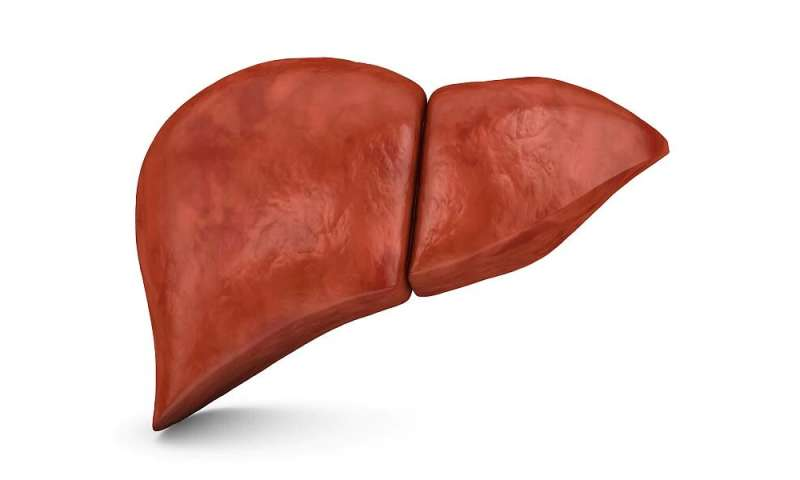 Fibrosis, steatosis of the liver in some young adults