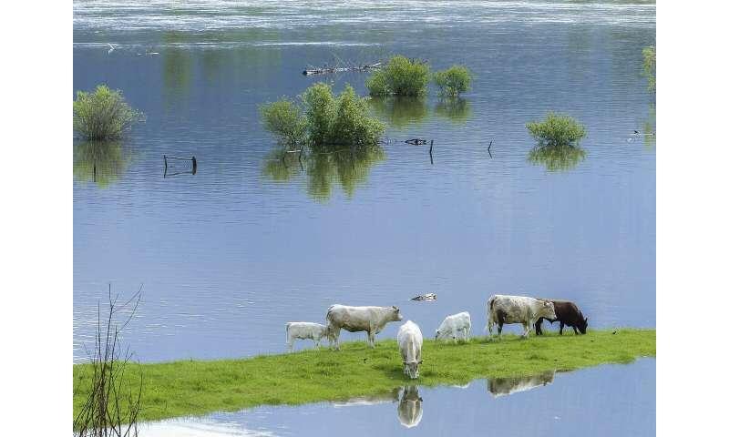 flooding farm
