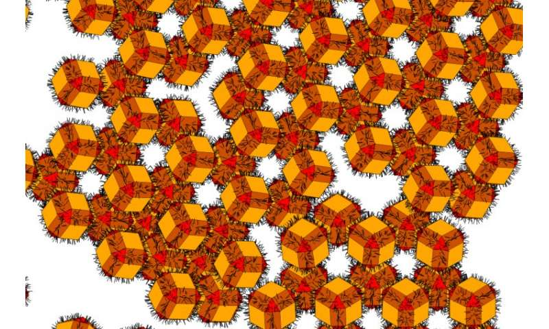 Formation of honeycomb nanostructures finally explained