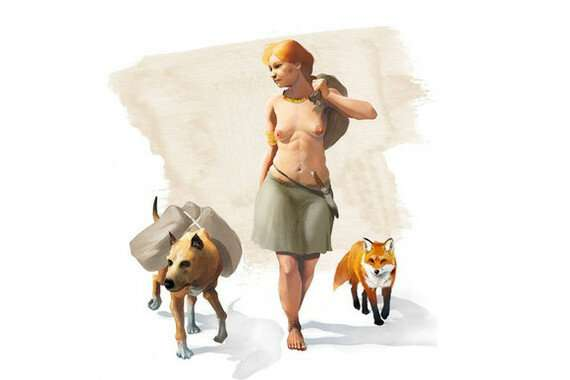 Foxes were domesticated by humans in the Bronze Age