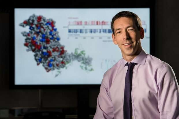 Gene networks reveal transition from healthy to failing heart