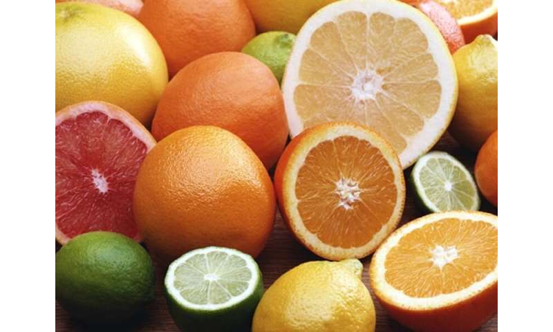 Getting zesty with citrus fruits