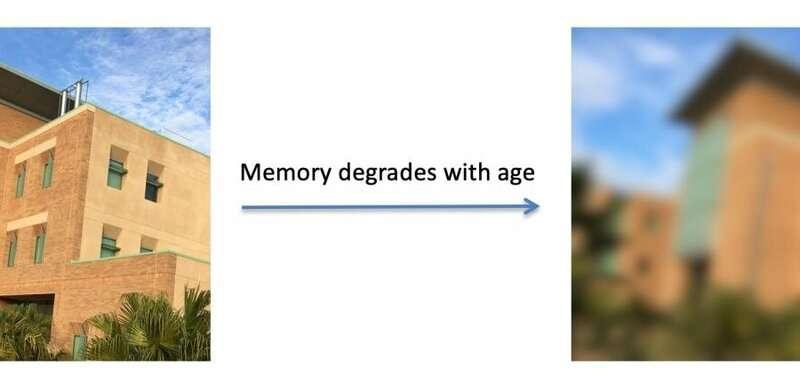 Good sleep quality and good mood lead to good working memory with age