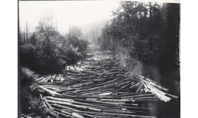 Historic logging site shows first human-caused bedrock erosion along an entire river
