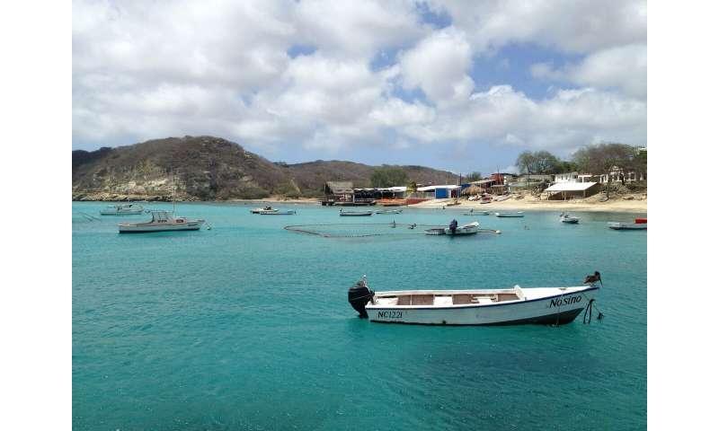 How coral bleaching threatens Caribbean communities