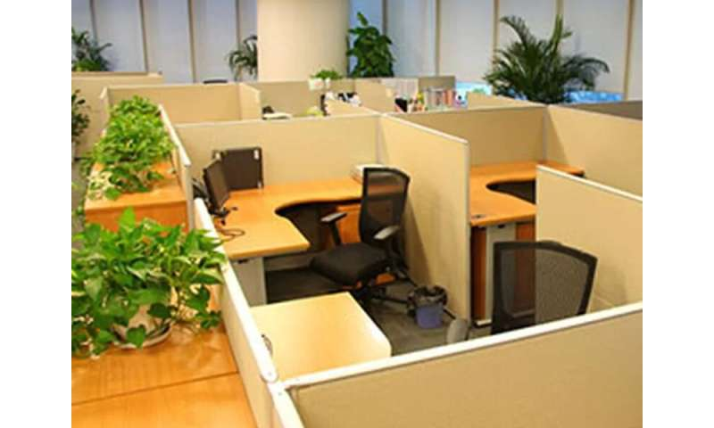 How to make your workplace a healthier one