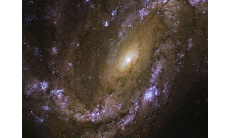 Hubble sets sights on an explosive galaxy