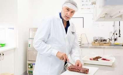 Humans will eat maggots, scientists insist