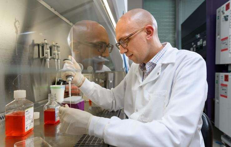 Hydrogel offers double punch against orthopedic bone infections