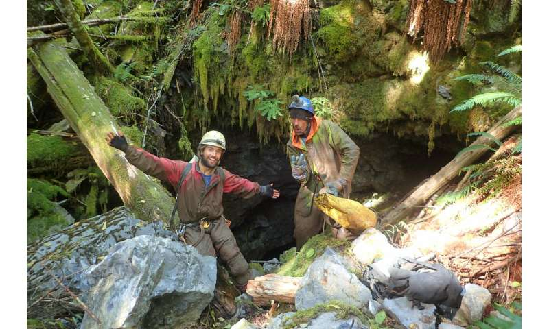 Ice Age survivors or stranded travellers? A new subterranean species discovered in Canada