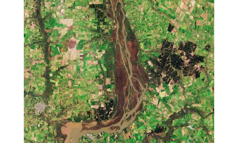 Image: Uruguay River wetlands