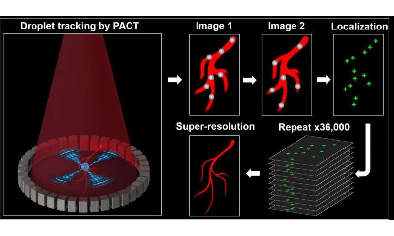 In vivo super-resolution photoacoustic computed tomography by localization of single dyed droplets